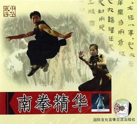 南拳精华(2VCD)