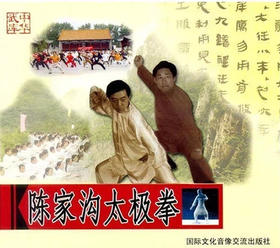 陈家沟太极拳(2VCD)