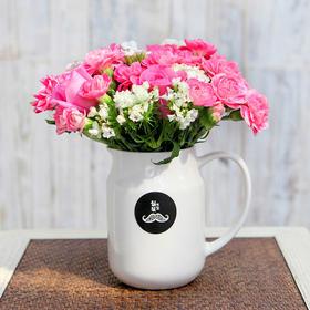 胡须先生 卿本佳人 玫瑰搭配康乃馨盒装花束顺丰包邮HXS2015031004