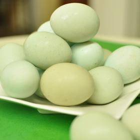 【限量抢购】原生态乌鸡蛋40粒/盒 天然散养绿壳鸡蛋 大泉州包邮到家