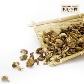 【本地本物】食草族 巴音布鲁克野蘑菇(150g装)