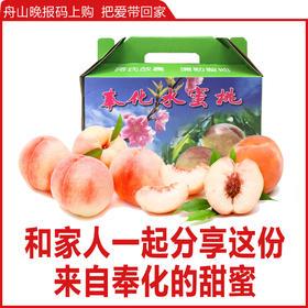 奉化水蜜桃  4公斤装