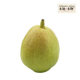 【本地本物】食鲜族 新疆库尔勒香梨 一级香梨 三十年树龄香梨 汁多甜酥、润肺生津,20个4.5斤装