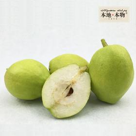 【本地本物】食鲜族 新疆库尔勒香梨  三十年树龄香梨 汁多甜酥、润肺生津