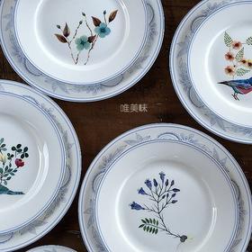 A级真骨瓷 限量 鸟与花图案 4色前菜主菜盘汤碗及咖啡杯碟套组 满包邮