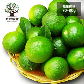 海南青柠檬1斤装 优质中果 新鲜水果 包邮 齐峰果业出品