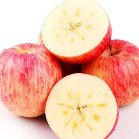 【开售啦】新疆阿克苏冰糖心苹果 红旗坡新鲜水果 净重约10斤装/箱