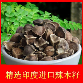 辣木籽  纯印度种 一粒五味知身体 85g 48小时内发货