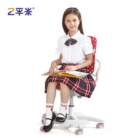 2平米睿翼功能椅