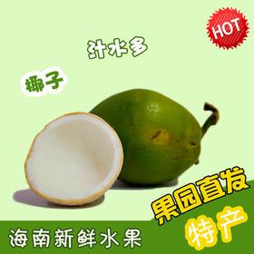 【南海网微商城】海南新鲜椰子 水多肉甜 5个