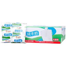 【到店自提测试】伊利无菌枕纯牛奶240ml 牛奶