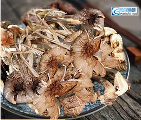 云南特产野生菌干货 纯正一级鸡枞菌食用蘑菇50g瓶装年货