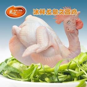 【南海网微商城】龙泉冰鲜文昌鸡 1250g