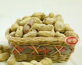 【龙岩味道】大池米田花生 湿烤咸酥型 特产零食年货