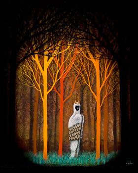 【版画】Andy Kehoe(美)|Forest of Illumination(启示之森)