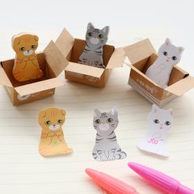 纸箱猫咪便签本  文具