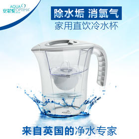 安芯泉家用净水壶 直饮过滤器2.5L 白色 全家喝干净的水