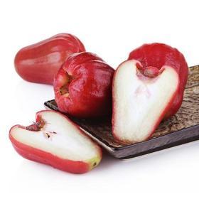 【台湾水果】新鲜水果台湾进口莲雾 蜜蜂玲莲雾3斤装大泉州包邮