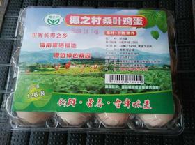 【南海网微商城】桑叶喂养鸡蛋 初生蛋 活动价45元 买三送二