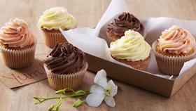 4.17  让纸杯蛋糕华丽变身!享受奶油的香甜!