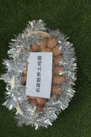 农家散养土鸡蛋(小)