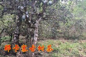 2019年那卡古树纯料私人高端定制580元/公斤