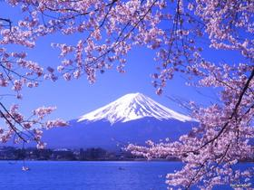东京/箱根富士山6日5晚