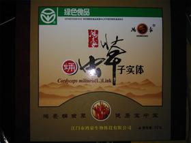 【积分兑换】鸿豪蛹虫草  10g/盒  需到店自提