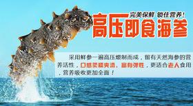 【江船长】高压即食海参 200g/条 完美保鲜 锁住营养