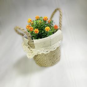 绳编小型花盆