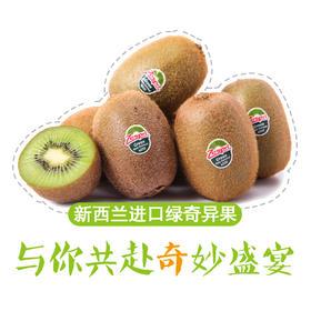 果子狸 新西兰 进口绿奇异果