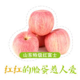 果子狸 山东特级 红富士苹果