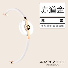 AMAZFIT 智能手环配件 赤道腕带金色