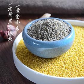 珍稀黑珍珠米/黄小米(健脾养胃 精选陕西延安)