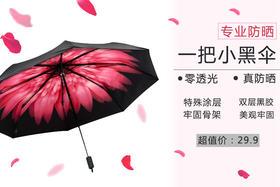 韩国专业黑胶防晒伞 优惠促销