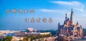上海迪士尼门票(测试-勿拍!)
