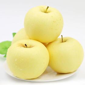 山东金富士苹果