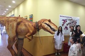 【周末亲子营】复活侏罗纪恐龙