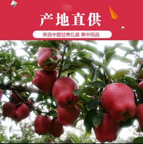 【有赞拼团】礼县天水花牛苹果甜脆新鲜水果花牛
