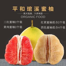 【果然多】平和琯溪三红蜜柚 /黄肉蜜柚/红黄混装皮薄汁多 清甜爽口产地直供包邮