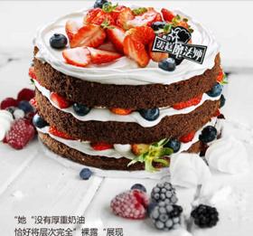 森林狂想曲~~巧克力乳脂蛋糕