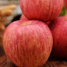苹果熟了!脆甜多汁天然老树苹果不催熟带皮一起吃更营养