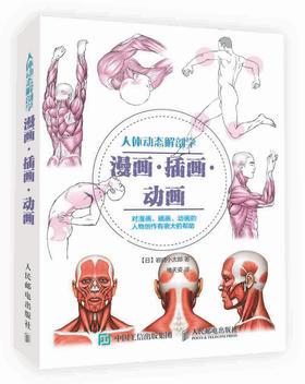 人体动态解剖学 漫画·插画·动画