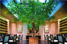 【新加坡美食】新加坡Joël Robuchon米其林三星餐厅预订服务