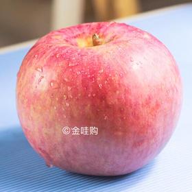 【江浙沪包邮】产地直发脆口丑苹果 大小随机满10斤一箱(一周两次发货,周一、周四)