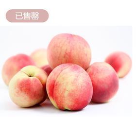 【预售】热心姊妹花爱心助农——西营镇泉水蜜桃