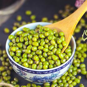 方家铺子丨有机绿豆  东北原产   有机农产杂粮  500g*2