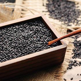 方家铺子丨有机黑米  东北粗米 黑米杂粮  500g