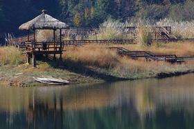 【杭州必体验】千岛湖龙川湾一日游