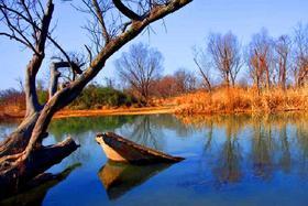 【杭州必体验】杭州清代富商宅第+西溪摇橹船+西湖之夜一日游